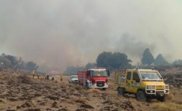 Continúa el combate contra los incendios forestales