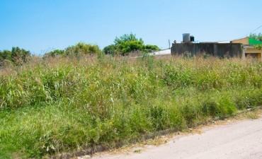 Notificacion a propietarios de terrenos baldios
