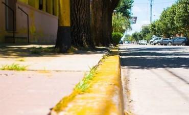 Preste atención  a las lineas amarillas