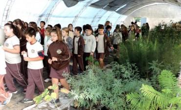Siguen llegando establecimientos educativos a visitar el Complejo Ambiental de Los Toldos