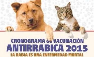 Programa de Vacunación Antirrábica en todo el distrito de General Viamonte