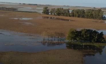De 600 a 900 mms la lluvia caída en el primer semestre del año