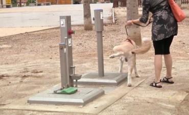 Inauguran primer baño público para perros