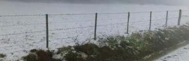 El granizo arrasó 90 mil hectáreas en el sudeste de Córdoba