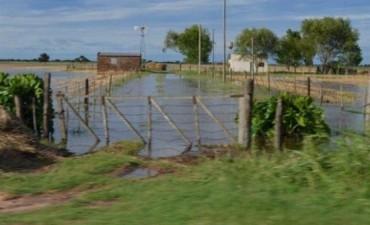 Pronostican un fuerte impacto negativo en la producción de trigo y soja