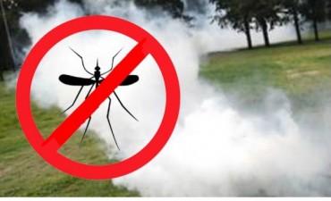 Se fumigarà contra mosquitos, en las proximas horas