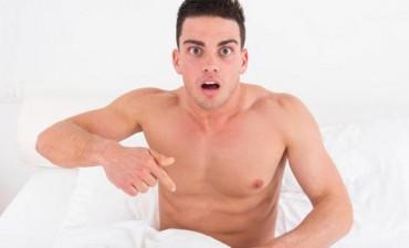 Diez cosas que no sabías del pene