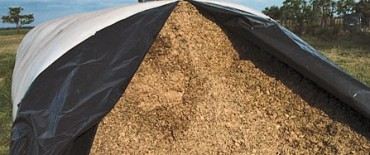 Robaron 30.000 kg de soja en Naón