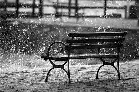 Llegó la primer lluvia del año