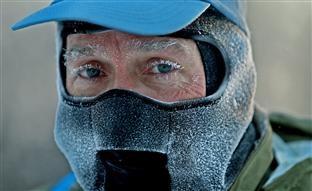 EEUU vive el día más frío en 40 años: abrigan hasta a los osos polares