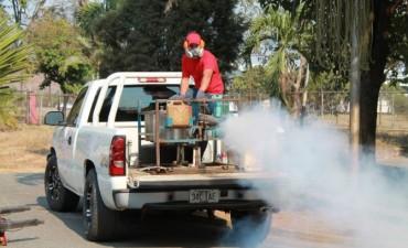 Confirmado primer caso de dengue en Los Toldos!
