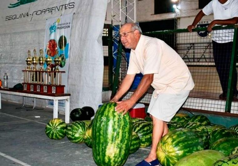 Una supersandía de casi 45 kilos fue premiada en Corrientes