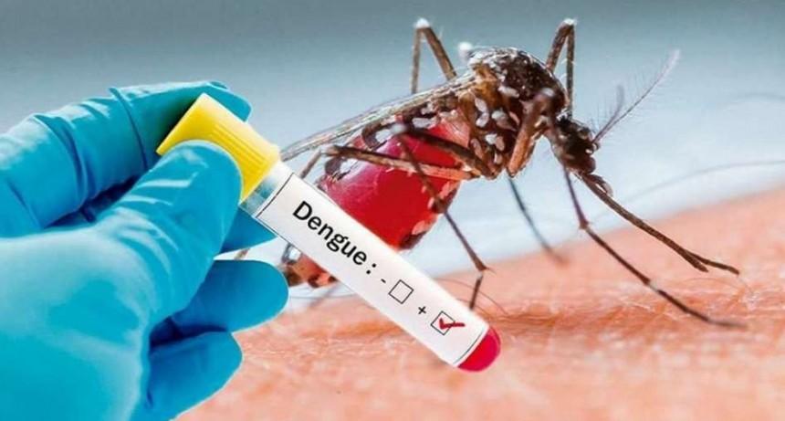 Vivamos libres de mosquitos