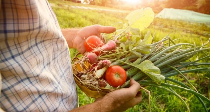 Las Buenas Prácticas Agrícolas serán obligatorias desde el 2020