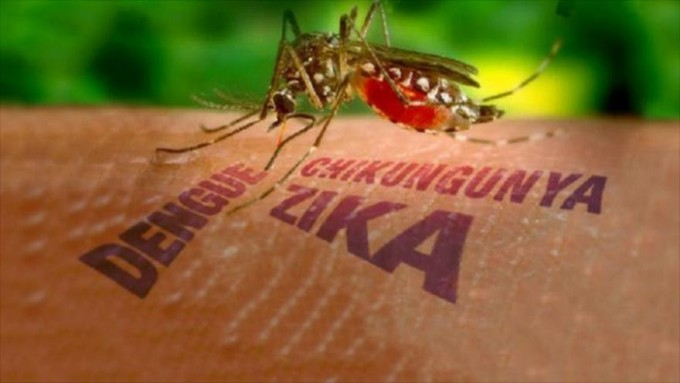 ¿Qué tan peligroso es el virus del Zica? by Carlos Vilchez Navamuel