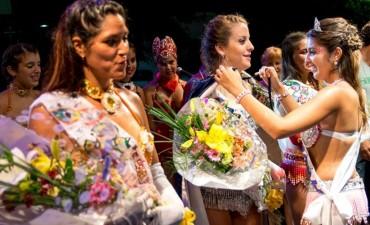 El carnaval Toldense ya tiene sus representantes
