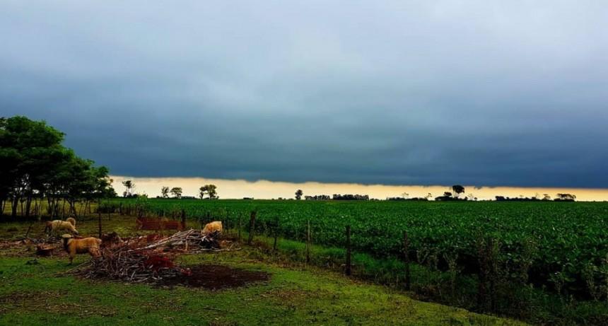 MERCADOS: Para el hombre de campo. Presenta Asociación rural de Gral Viamonte