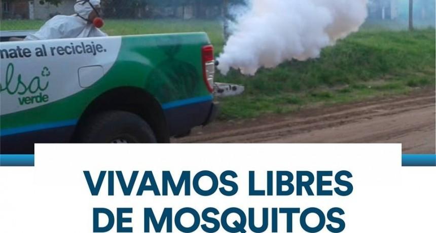 Control de mosquitos. Cronograma de aplicaciones