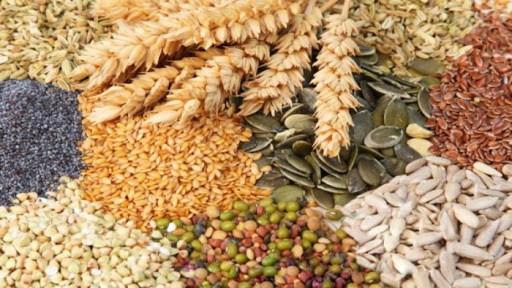 CURSO | Perito clasificador de   Cereales y Oleaginosas