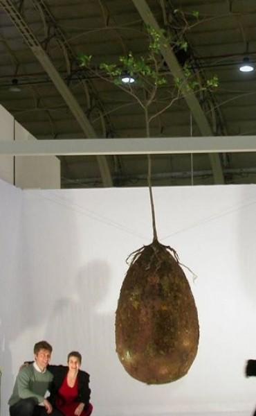 ITALIA: Una nueva forma de entierro convierte a los fallecidos en árboles