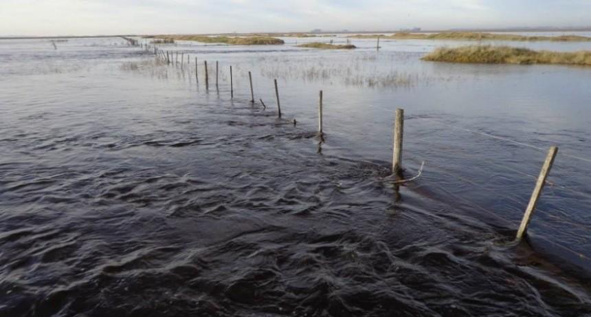 El gobierno decretó la emergencia agropecuaria en Trenque Lauquen y General Villegas
