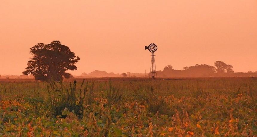 INFORMACIÓN GENERAL: Para el hombre de campo. Presenta Asociación rural de Gral Viamonte