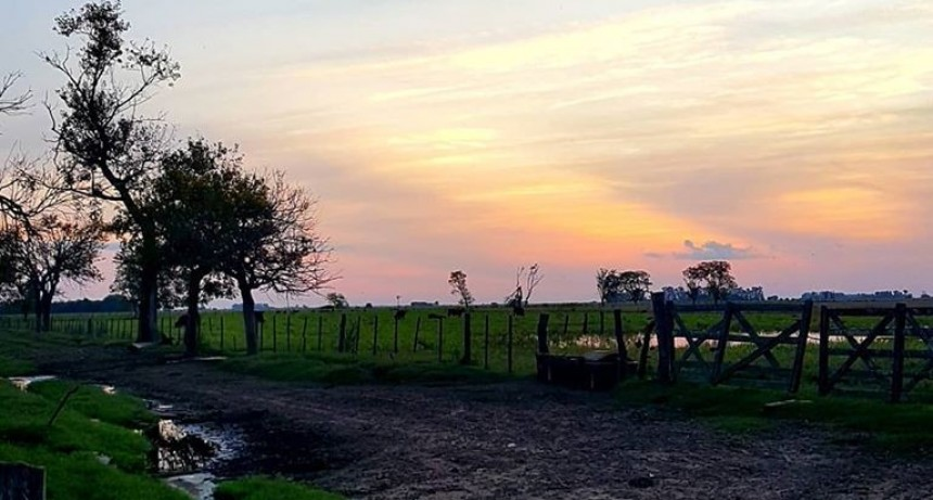 MERCADOS: Para el hombre de campo: Presenta Asociación rural de Gral Viamonte