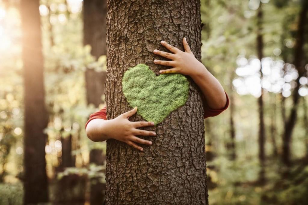 10 apps para ayudarte a llevar una vida más sostenible By Sarah Romero