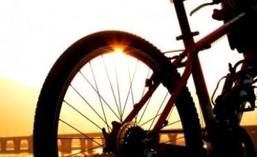 La bicicleta y la Seguridad Vial By Liliana Sangre