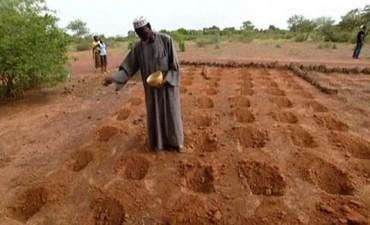 El hombre que frenó el desierto