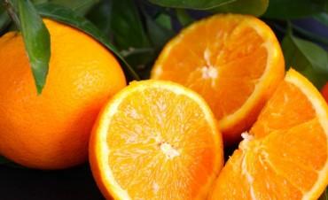 Somos lo que comemos: Los alimentos que fortalecen las defensas