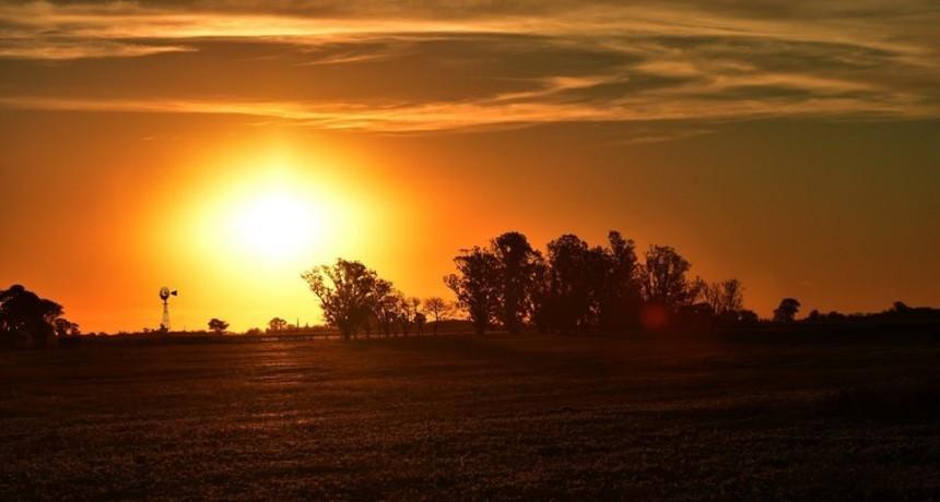 Info actualizada para el hombre de campo: Agricultura, Ganaderia, Forestación,Fruti-horticultura, y Agro-industria, presentado por la Asociaciòn Rural de Gral Viamonte