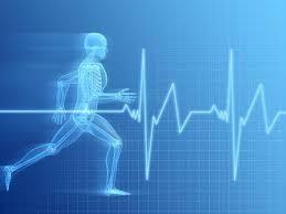 Vida saludable en actividad física By Prof Guilllermo Gómez