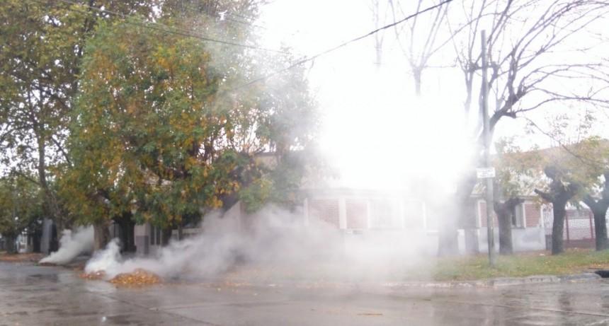 Quemar hojas contamina el medio ambiente y es una insana costumbre