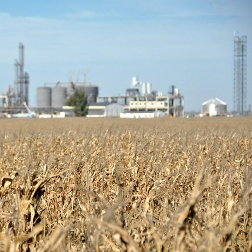 La bioenergía tiene su jornada virtual
