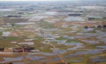 Las aguas bajan turbias: el noroeste bonaerense otra vez bajo agua