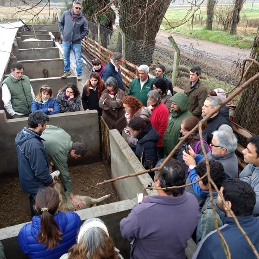 Cierre de un curso sobre el manejo de la producción ovina y caprina y el agregado de valor