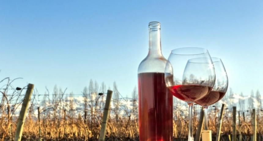 Destinos de pura cepa | El vino como circuito turístico en Argentina