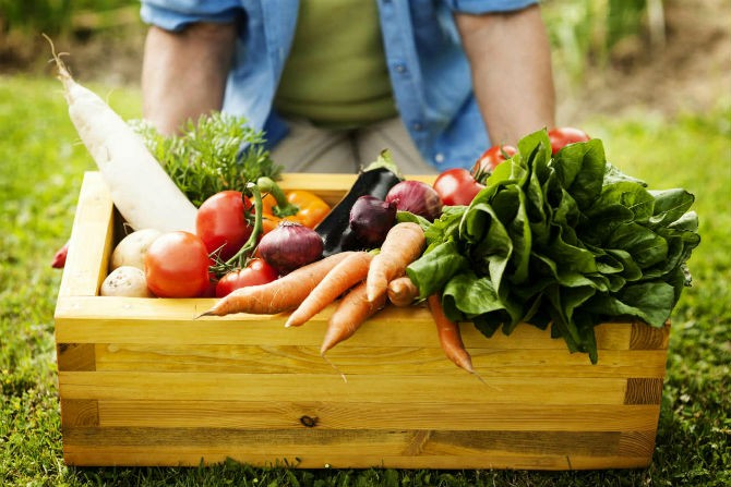 HABLEMOS de NUTRICION: LIC NADIA LINGOR | Hoy nos habla de alimentos orgánicos