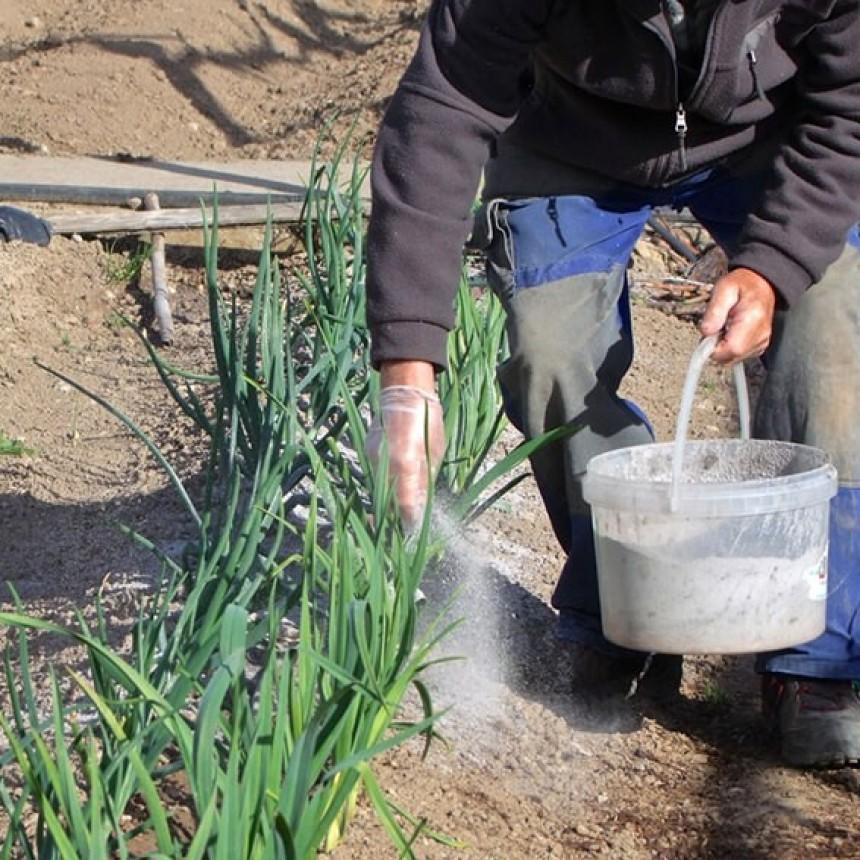 Ing Agron CECILIA SARCO | Planificación en el contexto de la huerta - El abono