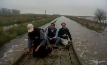 Los Toldos: tras dos años de pérdidas por inundaciones, pequeños productores de granos, ganaderos y tamberos, siguen sin poder sembrar y comienzan a liquidar sus animales
