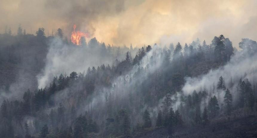 Con el paso del tiempo el humo de los incendios forestales es cuatro veces más tóxico