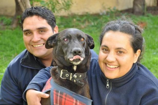 JUNIN: Historia de amor: La mujer policía - es de Los Toldos-que lo rescató adoptó al perrito que había sido torturado