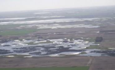 Inundaciones en 9 de Julio: Colegas de la vecina ciudad y autoridades sobrevolaron la zona