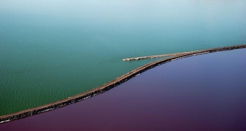 ¿Por qué este lago es mitad rosado y mitad verde