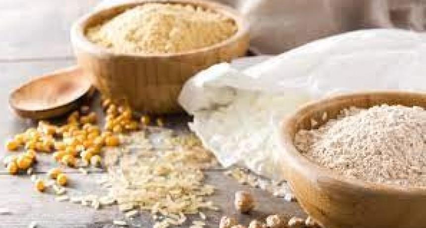 HABLEMOS de NUTRICION: LIC NADIA LINGOR | Hoy nos habla de harina integral y la diferencia de la harina blanca