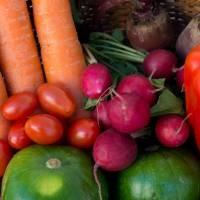 Un gran paso: se aprobó la Ley Donal y la creación del Plan Nacional para Reducir los Desperdicios de Alimentos