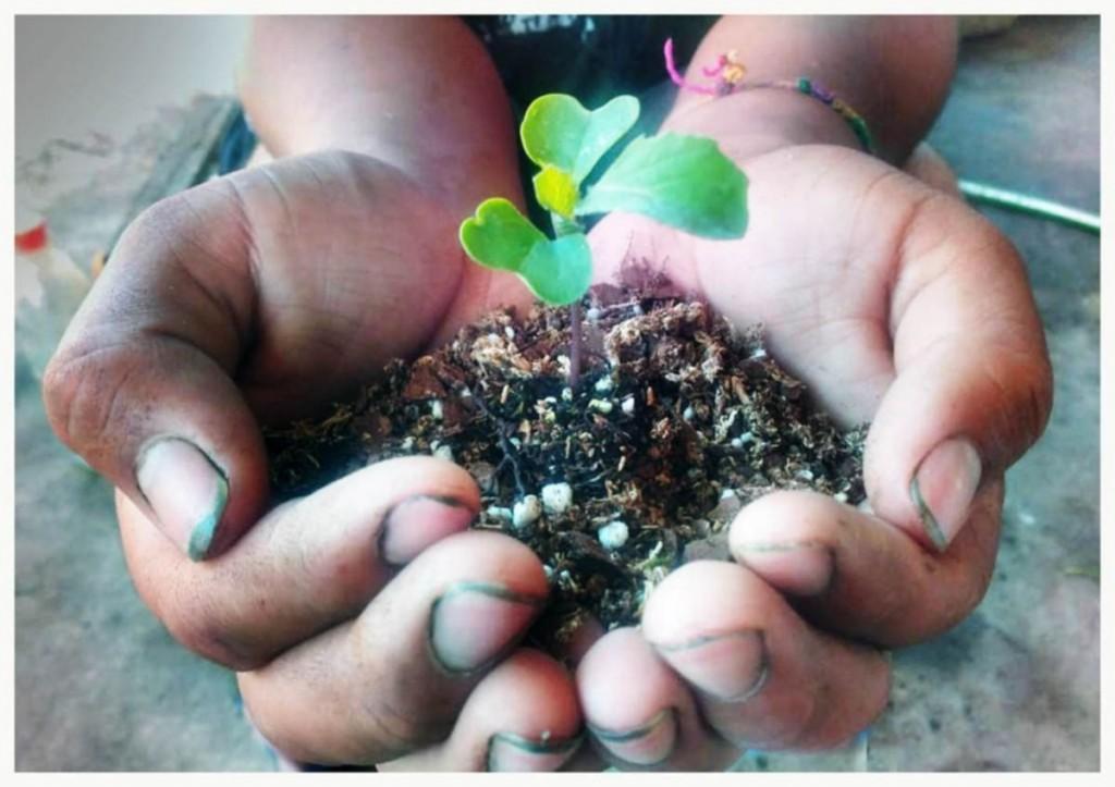 EN OCTUBRE | Seguí sumándote al ecocanje
