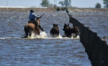Las pérdidas por las inundaciones en Villegas superan los 5 mil millones de pesos y hay 430 mil hectáreas afectadas