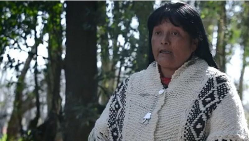 2 y 3 de diciembre en Los Toldos.Festival Mapuche